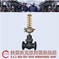 进口自力式压差调节阀用心制造 成就品质