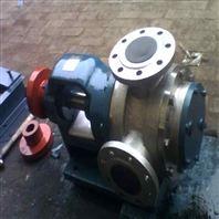 涂料胶输送泵华潮NYP-220高粘度泵 厂家生产