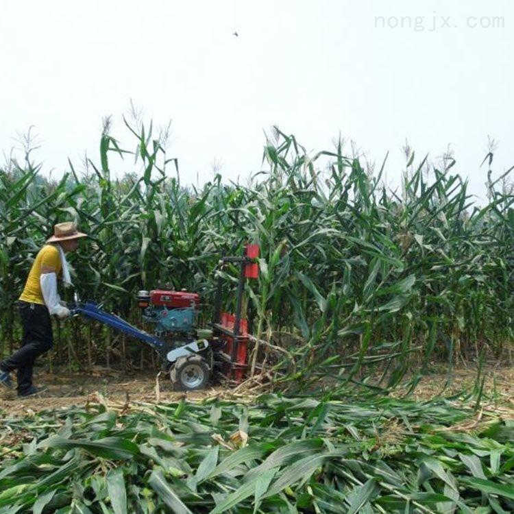 玉米秸秆甜叶菊割倒机厂家