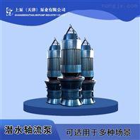 江门排灌站用QZB潜水轴流轴泵
