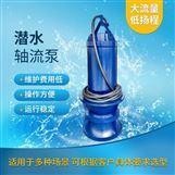 井筒悬吊式安装1400QZB潜水轴流泵出厂价格