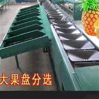 称重式凤梨选果机 菠萝分大小机器
