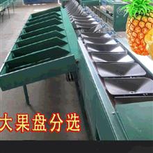 XGJ-BL称重式凤梨选果机 菠萝分大小机器
