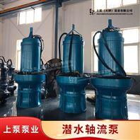 城市排水工程用500QZ卧式潜水轴流泵型号