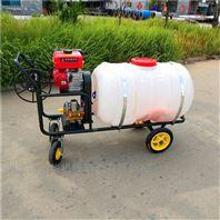 汽油大功率喷雾器 夏季杀虫喷药机