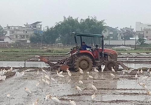 切实提高畜禽养殖粪污资源化利用水平——解读《关于进一步明确 畜禽粪污还田利用要求 强化养殖污染监管的通知》