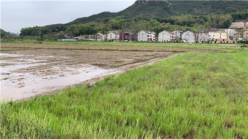 广东省关于2020年第二批农机试验鉴定结果的通报