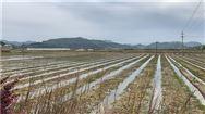 每亩最高补助30元!江苏省今年开展农机深松整地50万亩