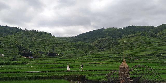 农业农村部:继续优化农机补贴机具种类范围,纳入更多山区特色产业发展所需机具