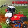RH--KGJ-186手扶式旋耕机价格优惠 葡萄园翻土开沟机